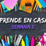 Aprende en Casa Edomex: Plan de trabajo del 27 de septiembre al 1 de octubre Foto: Especial